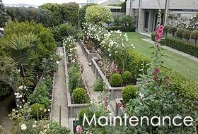 Ideas For Garden Landscaping Auckland In 2020 Garden Design Garden Landscaping Hibiscus Garden