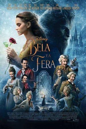 Filmes Online Vip Filmes De Romance Com Imagens Beleza Feral