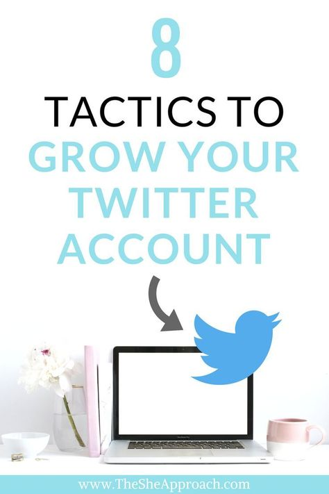 How To Automate And Grow Your Twitter Account