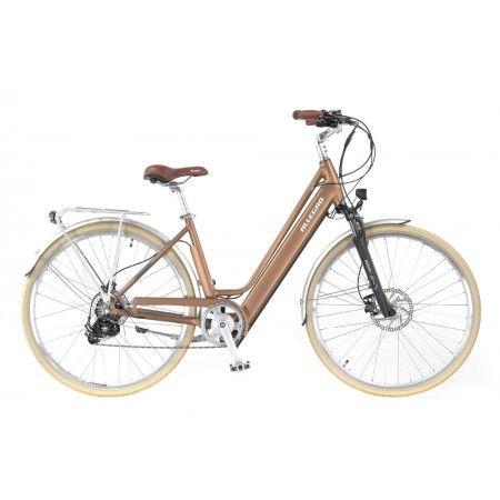 Allegro Invisible City Comfort Bronze Das Leichte Und Komfortable City E Bike Mit Einem Integrierten Und Herausnehmbaren Akku Im Rahmen Fur Mu Radeln Fahrrad