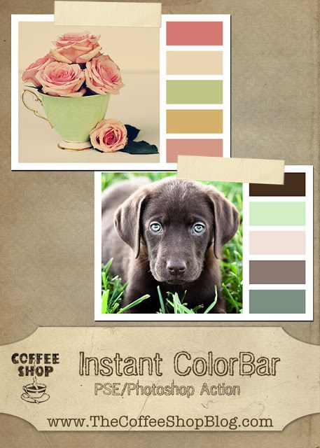 CoffeeShop Instant ColorBar Photoshop/PSE Action!