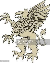 Image Result For What Is A Griffin Bird Birds Animals