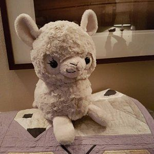 Plush Sewing Pattern Pdf Owl Plushie Easy Kawaii Stuffed Animal