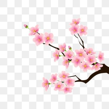 Cartoon Pink Flower Download Cartoon Flowers Pink Flowers Peach Blossom Png Transparent Clipart Image And Psd File For Free Download Flower Download Pink Flowers Background Flower Illustration
