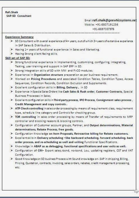 Sap Sd Consultant Sample Resume. 19 Best Government Resume