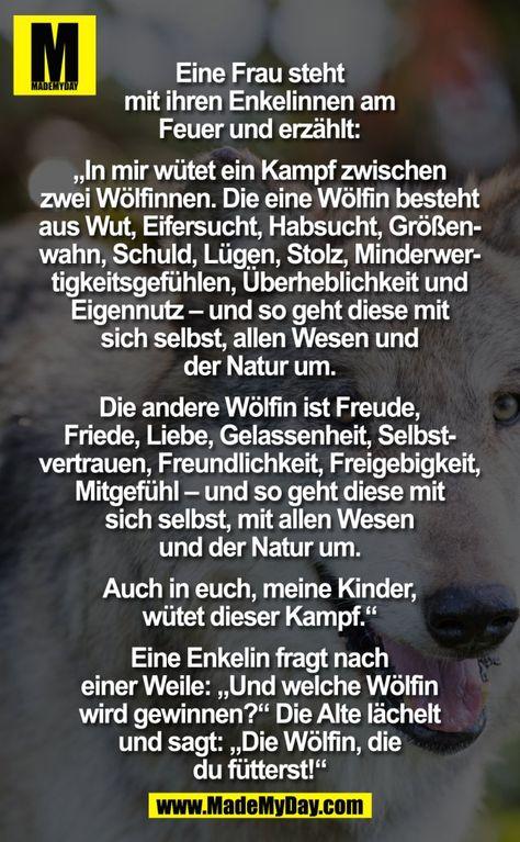 """Eine Frau steht mit ihren Enkelinnen am Feuer und erzählt: """"In mir wütend ein Kampf zwischen zwei Wölfinnen. Die eine Wölfin besteht aus Wut, Eifersucht, Habsucht, Größenwahn, Schuld, Lügen, Stolz, Minderwertigkeitsgefühlen, Überheblichkeit und Eigennutz – und so geht diese mit sich selbst, allen Wesen und der Natur um. Die andere Wölfin ist Freude, Friede, Liebe, Gelassenheit, Selbstvertrauen, Freundlichkeit, Freigebigkeit, Mitgefühl – und so geht diese mit sich selbst, mit allen Wesen und d..."""
