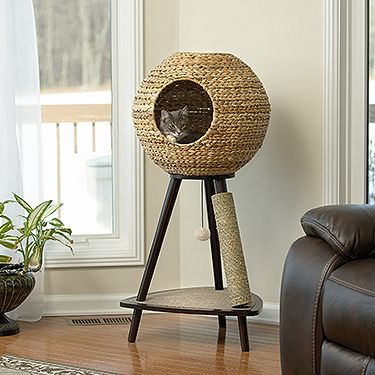 Wicker sphere with two access holes. Machine washable bed cushion. Carpeted base includes toy on elastic string. Leg with sisal rope cover for scratching. Espresso finish.