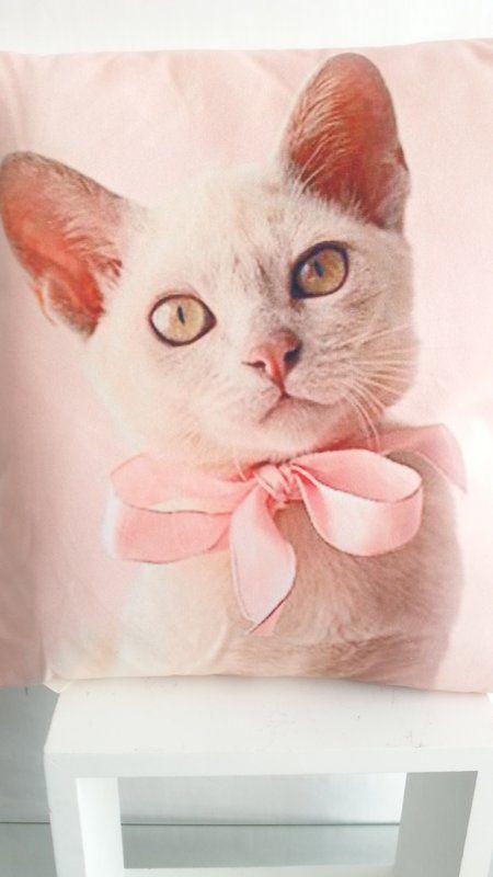 Katze Printkissen Katzenmotiv Geschenk Katzenbesitzer 6 95