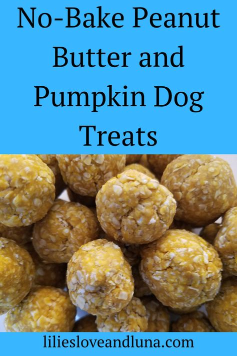 Easy, no-bake pumpkin and peanut butter dog treats. dog treats peanut butter Pumpkin and Peanut Butter Dog Treats No Bake Dog Treats, Peanut Butter Dog Treats, Puppy Treats, Diy Dog Treats, Healthy Dog Treats, Pumpkin Dog Treats Homemade, Soft Dog Treats, Treats For Puppies, Peanut Butter Dog Biscuits