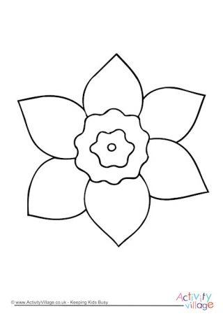 Daffodil Colouring Page Malvorlagen Illustration Blume Narzissen