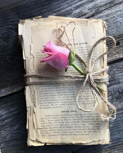Would love to credit this photo. Found it on Pinterest with no source, but I just love the story it tells.  Love of reading!!  Romance | Reading | Romantic Suspense | Flower