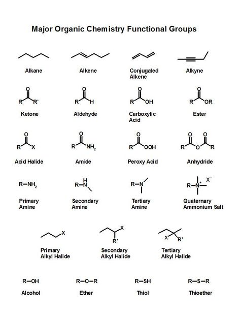 Organic chemistry 101 nomenclature iupac nomenclature chart naming organic compounds chart for naming compounds compound naming chart organic chemistry naming chart organic chemistry nomenclature chart Organic Chemistry Reactions, Chemistry Help, Chemistry Classroom, Chemistry Notes, Chemistry Lessons, Teaching Chemistry, Science Notes, Science Chemistry, Funny Chemistry