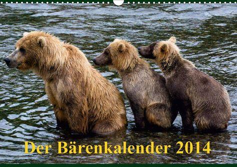 Grizzlybären in ihrer natürlichen Umgebung. Beeindruckende Fotos dieser Spezie aufgenommen in der Wildnis Alaskas.