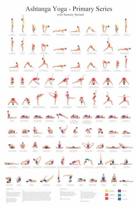 Ashtanga Yoga Primary Series with Sammy Seriani. This poster illustrates the postures of the primary series Full color poster shows perfect yoga Ashtanga Yoga Primary Series Poster Yoga Fitness, Fitness Workouts, Physical Fitness, Fitness 24, Fitness Sport, Fitness Motivation, Fitness Tips, Health Fitness, Fitness Logo