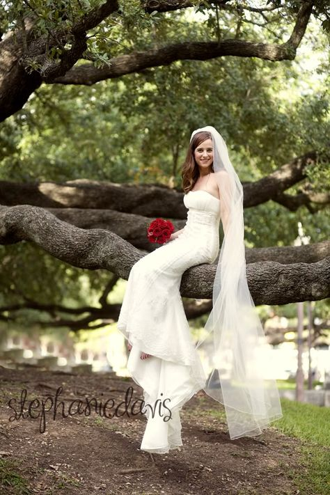 The low-hanging trees on #Baylor's Vera Daniel Plaza is such a beautiful location for bridal shots!