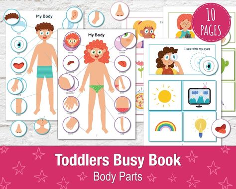 Busy Book Bundle for Toddlers PDF Vol. 2, Printable Activity Book, Quiet Book, Preschool Binder, Toddler Busy Bag Bundle, Baby Busy Book