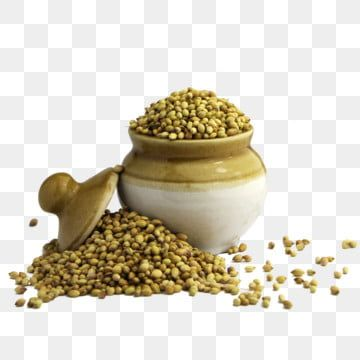 Coriander Seeds In Ceramic Pot Aroma Coriander Seeds Png Transparent Clipart Image And Psd File For Free Download In 2021 Coriander Seeds Cooking Clipart Coriander