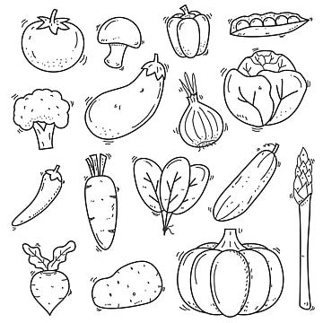 Set Of Vegetables Doodle Vector Illustration In Sketch Hand Drawn Style Such Doodle Clipart Carrot Tomato Png And Vector With Transparent Background For Free How To Draw Hands Doodle Drawings Doodle
