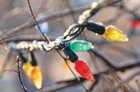 Recycle broken holiday lights for a worthy cause