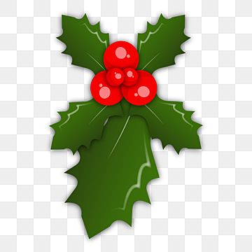 Holly Decorative Christmass Png Clipart Red Berry Green Abstract Green Leaves Png And Vector With Transparent Background For Free Download Holly Decorations Flower Illustration Clip Art