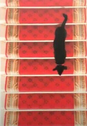 """Résultat de recherche d'images pour """"Brigitte macron et nemo et le chat"""""""