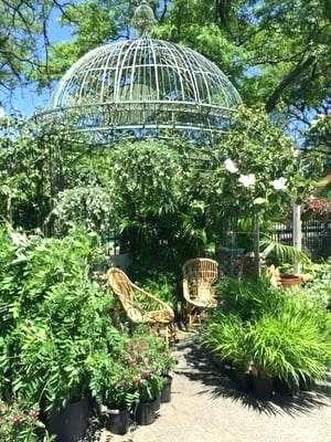 Garden Center Cambridge Garden Center Garden