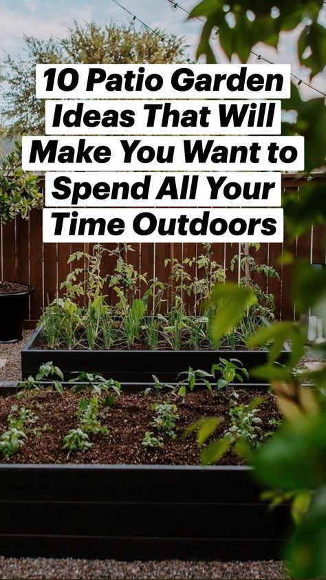 10 Patio Garden Ideas That Will Make You Want to Spend All Your Time Outdoors