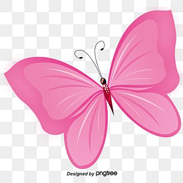Pink Transparent Butterfly Clipart Butterfly Clip Art Free Clip Art Butterfly Art