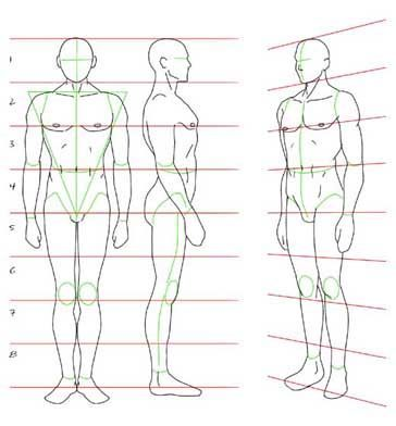 Dibujo del cuerpo  temp  Pinterest  Anatomy Drawings and Sketches