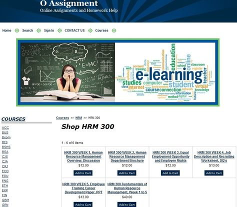 HRM 300 Week 4 Team Assignment Human Resource Management Training - hr resource