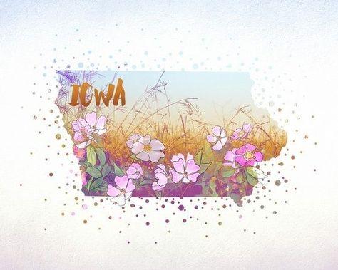 Iowa State Flower Wild Rose Wall Art Prints Acrylic Wall Art Art