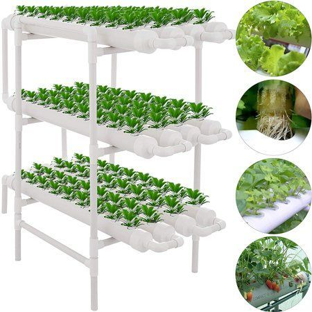 Vevor 108 Sites 12 Pipes Hydroponic Site Grow Kit Water Culture Garden Plant System Walmart Com Culture In 2020 Hydroponic Growing Hydroponic Grow Kits Hydroponics
