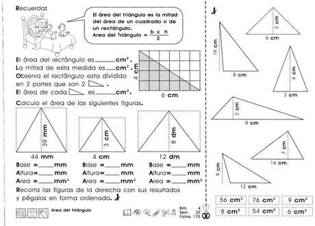Area Del Triangulo 4to Grado Clasificacion De Triangulos