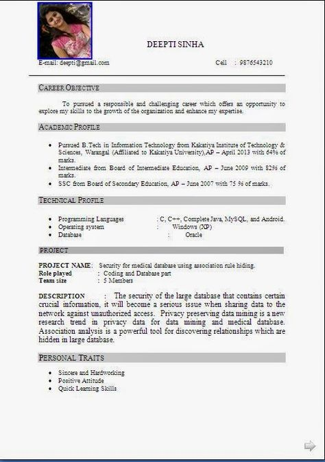 best cv example Sample Template Example ofExcellent Curriculum - resume formats for it freshers
