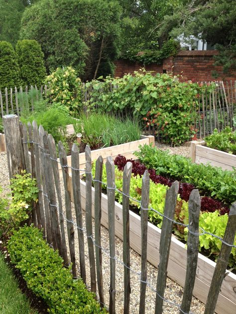 A steak fence around raised gardening boxes helps keep mid-size animals away.