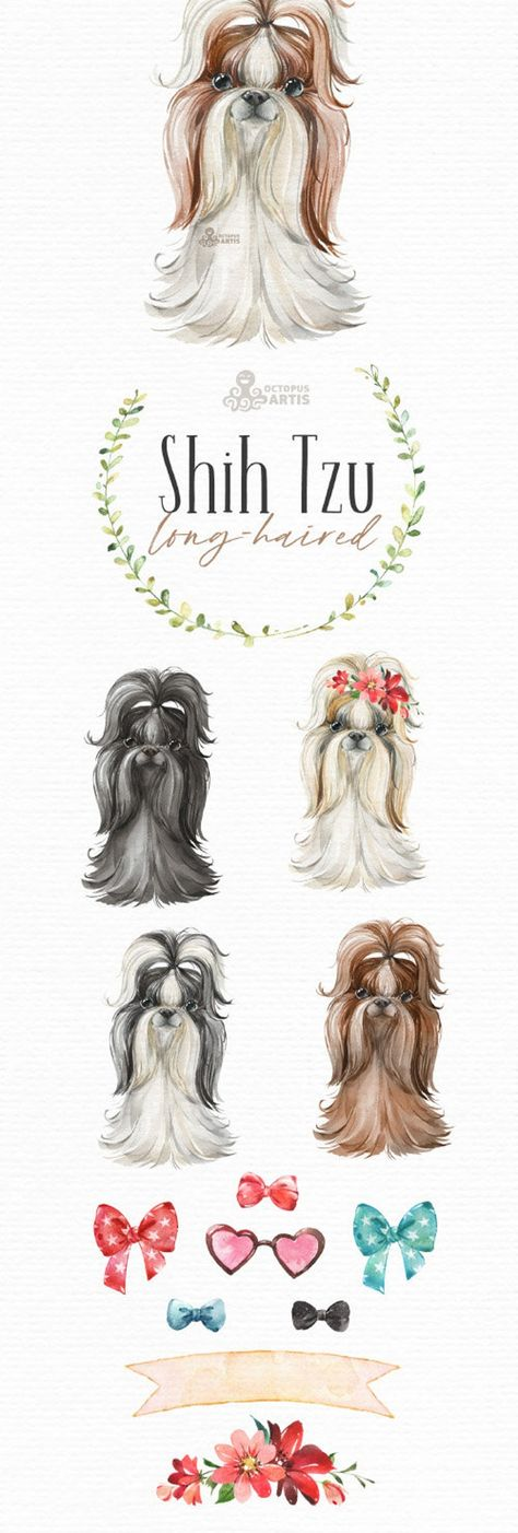 Shih Tzu. Long-Haired. Watercolor little dog clipart, portrait, puppy, doggie, baby, flowers, kids n