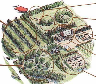 Agroforestry Systems Layout Planning A Silvopastoralsystem Farm Layout Farm Plans Farm Design