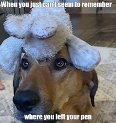 Nurse Humor Nurse Meme Nurse Memes Humor Nurse Humor Nursing Memes