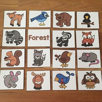 Farm, Zoo, Forest, and Ocean Animals Picture Cards and Worksheets ...