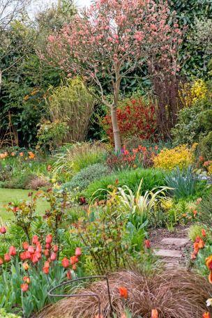 Landscape Magazine Spring 2016 Deciduous Trees Trees To Plant Gorgeous Gardens