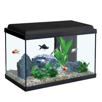 Aquarium Sarawak Noir 40 Litres En 2020 Meuble Aquarium Aquarium Petit Aquarium
