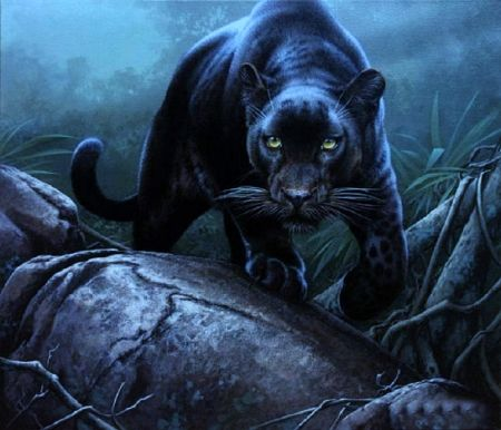 Forest Shadow 3d And Cg Wallpaper Id 2099572 Desktop Nexus Abstract Big Cats Art Animal Paintings Animals