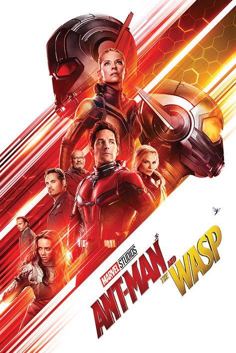 Pin De Superheroesverse En Mcu Movies Tv Shows En 2021 Hombre Hormiga Pelis Marvel Antman Y La Avispa