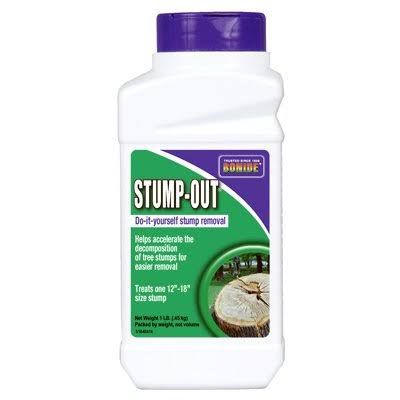 Kill A Tree Stump Stump Removal Stump Out Plant Diseases