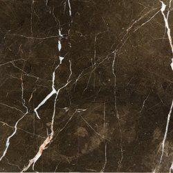 12 X 12 Marble Floor Wall Tile In 2020 Polished Plaster Emser Emser Tile