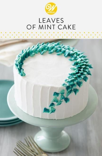 28 Ideas For Cake Decorating Ideas For Beginners Birthday Mint Cake