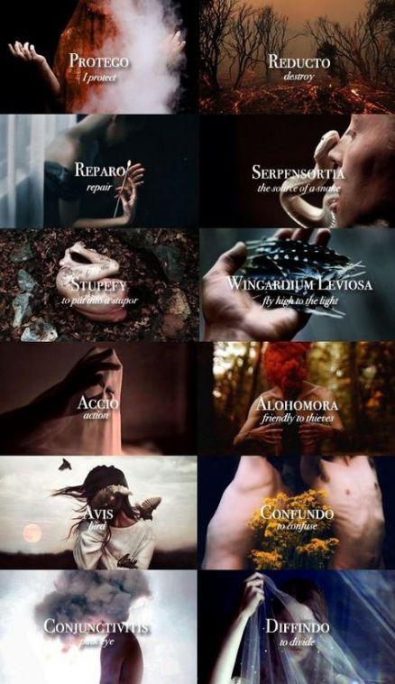 70 New Ideas For Funny Harry Potter Stuff Ravenclaw Funny Zauberspruche Fantastische Tierwesen Griechische Mythologie