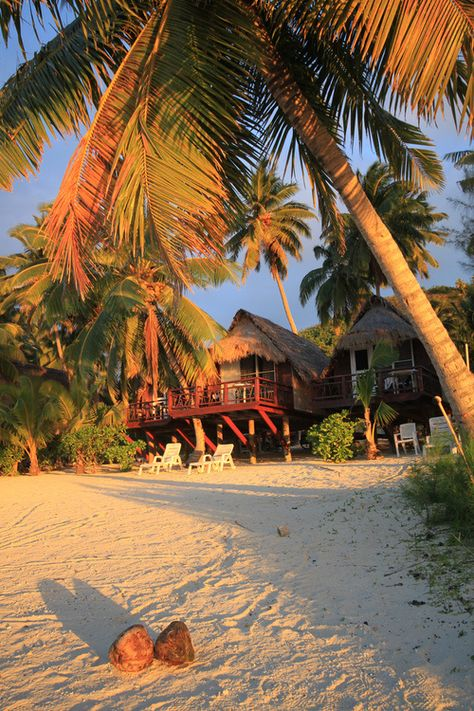 Coconuts and Beach Huts - Paradise Cove, Cook Islands Places To Travel, Places To See, Paradise Cove, Tropical Paradise, Cook Islands, Fiji Islands, Travel Aesthetic, Island Life, Beautiful Beaches