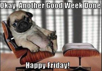 Happy Friday Meme Funny Happy Friday Meme Funny Friday Humor Kid Memes Dankest Memes Good Friday Funny Jokes Friday Humor Friday Meme Funny Friday Memes