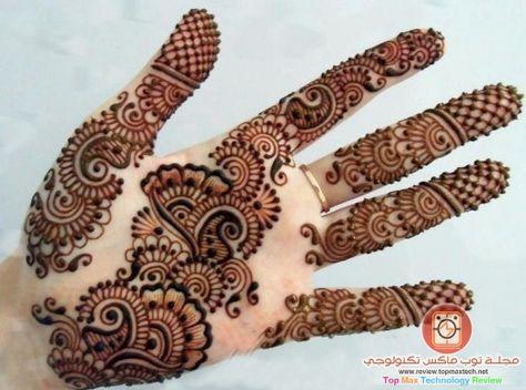 صورة نقش حناء ناعم جدا نقوش رقيقة على الاصابع و وردة انيقة Mehndi Designs New Mehndi Designs Mehndi Design Images